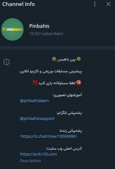 تلگرام-پین-باهیس